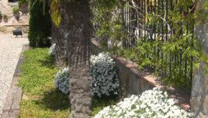 Bodas-Barcelona-jardin-37