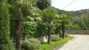Bodas-Barcelona-jardin-49